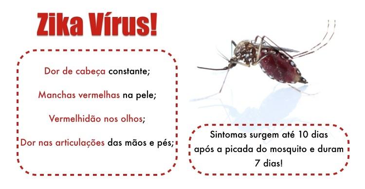 Zika - mitos e verdades