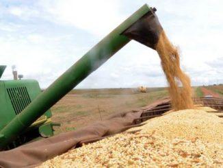Safra de cereais, leguminosas e oleaginosas deste ano deve ser 3,1% maior que a produção de 2018(Arquivo/Agência Brasil)