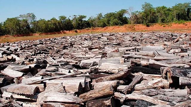 Rio Cravari, que passa na Terra Indígena Manoki, teve o leito desviado com adubos químicos – Foto: ALMT