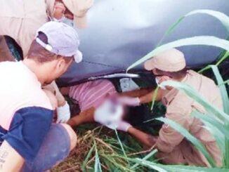 Resgate feito pelo Corpo de Bombeiros de Jaru. Foto: A Notícia Mais