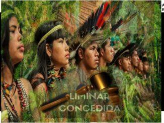 Liminar da Justiça protege terras indígenas no sul de Rondônia