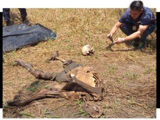 Ossada humana encontra por uma mulherquando fazia colheira de tucumã na zona rural de Porto Velho.